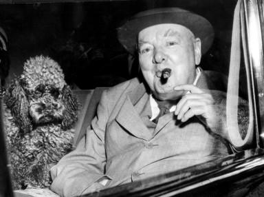 Winnie & Dog