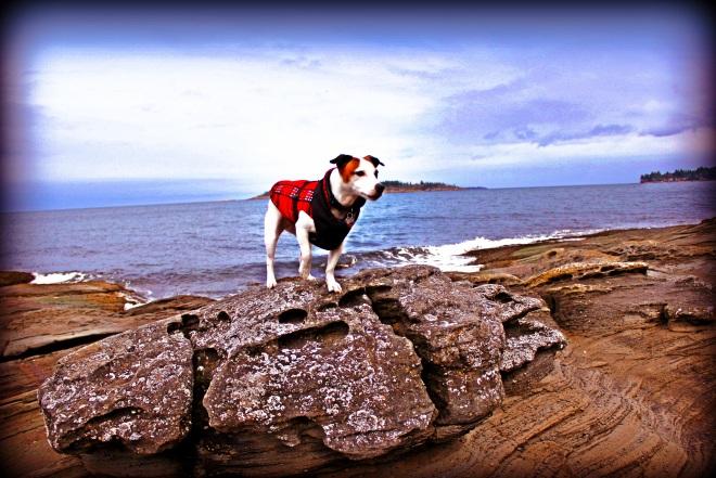 Lulu Against Ocean